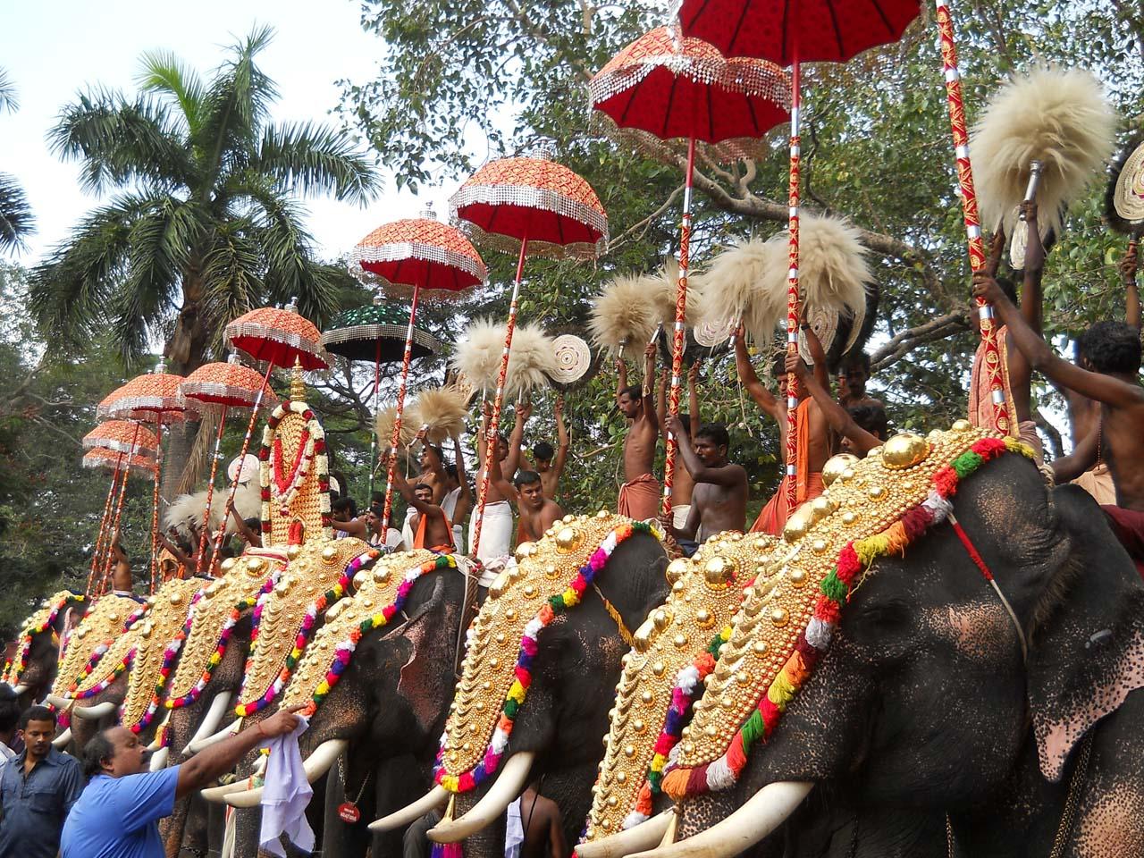 Thrissur Pooram Festivals of India
