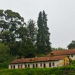 On the way Hills of ooty