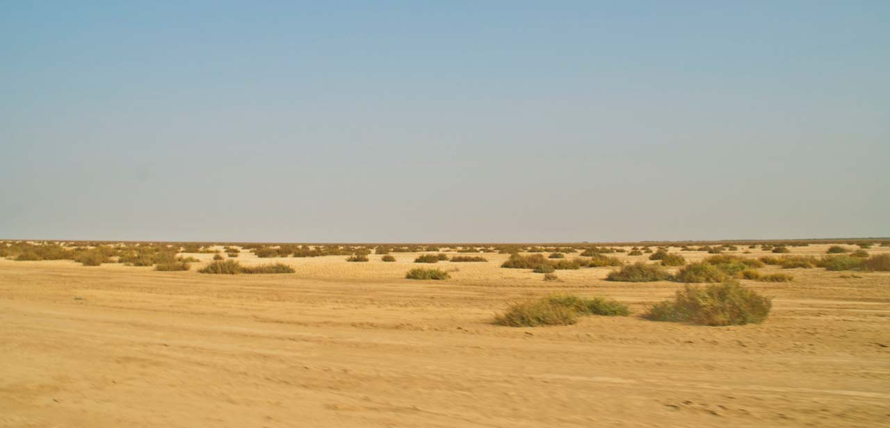 Barren Land in Rann of Kutch
