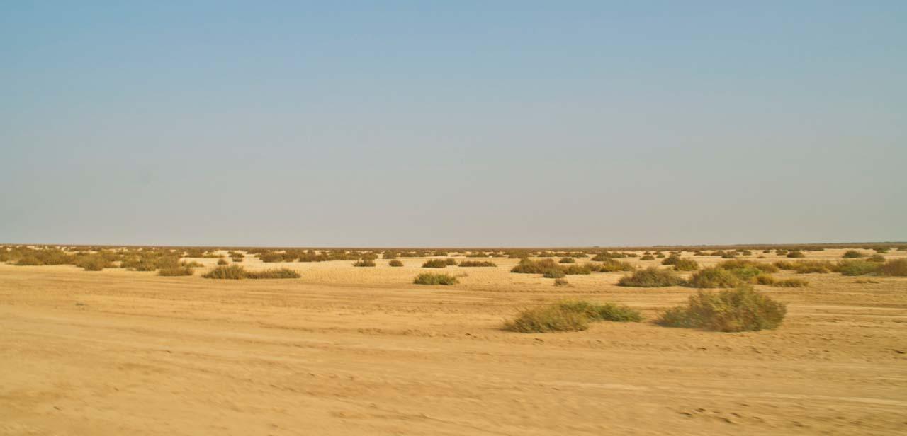 Barren Land in Rann of Kutch
