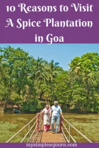 10 Reasons to Visit A Spice Plantation in Goa