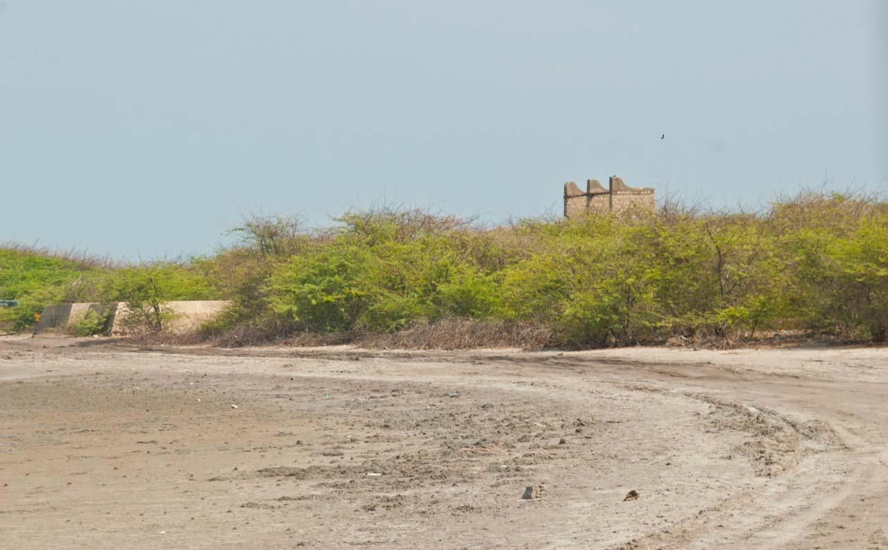 Dhanushkodi railway station's remains from distance