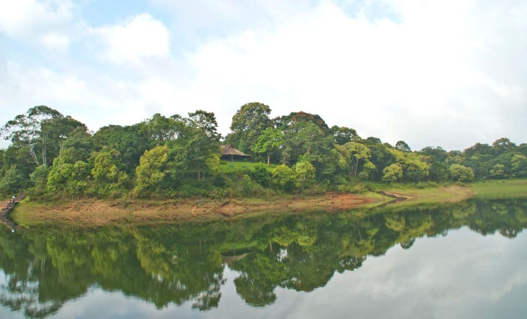 Boating in Periyar lake