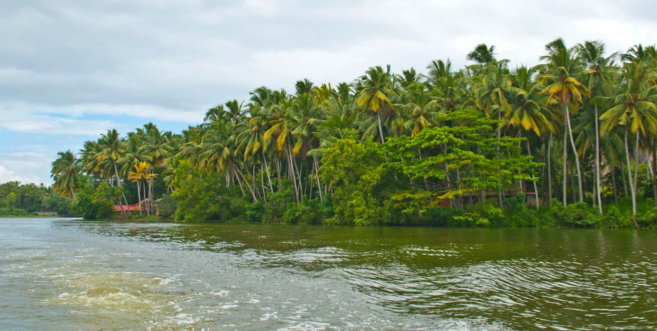 Backwaters in Trivandrum
