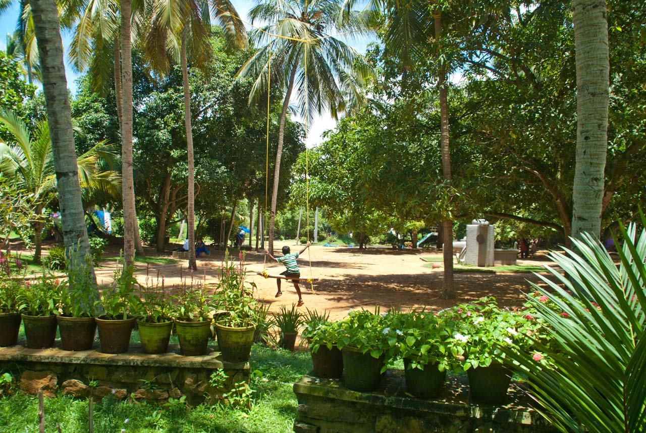 Swing in Veli tourist village