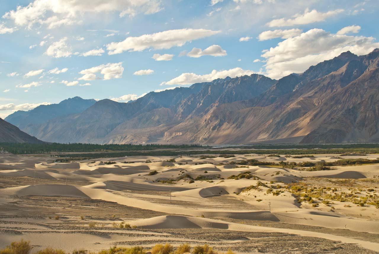 Sand dunes in Nubra Valley
