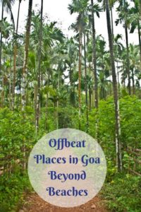 Offbeat Places in Goa Beyond Beaches