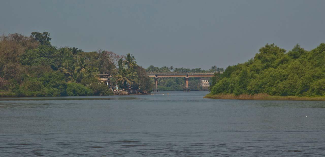 Goa Backwater tour
