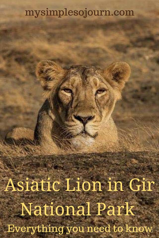 Gir National Park Safari and other Information