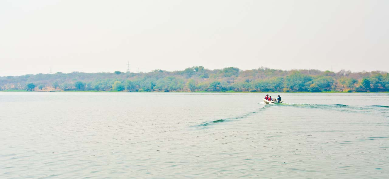 Chambal river boating