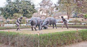 Sankardev Kalakshetra Guwahati