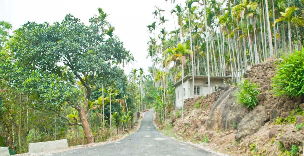 Cherrapunji sightseeing trip from Shillong Meghalaya