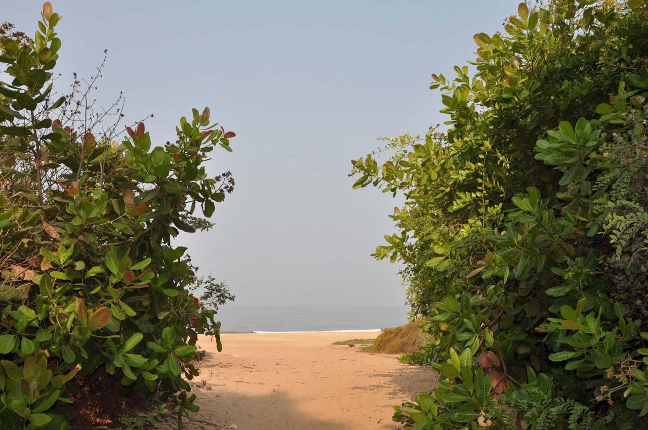 Bambolim beach Goa