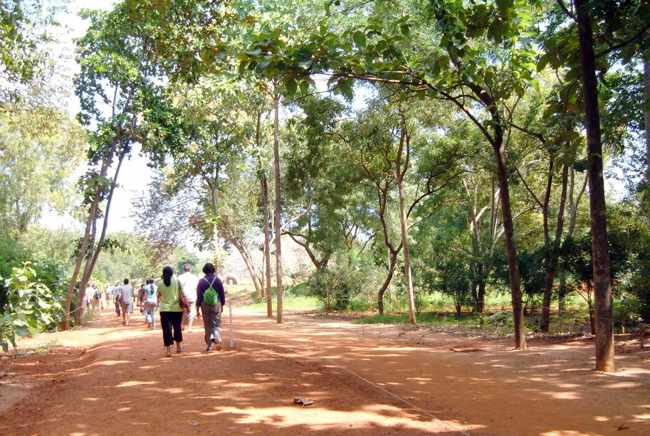 Inside Auroville