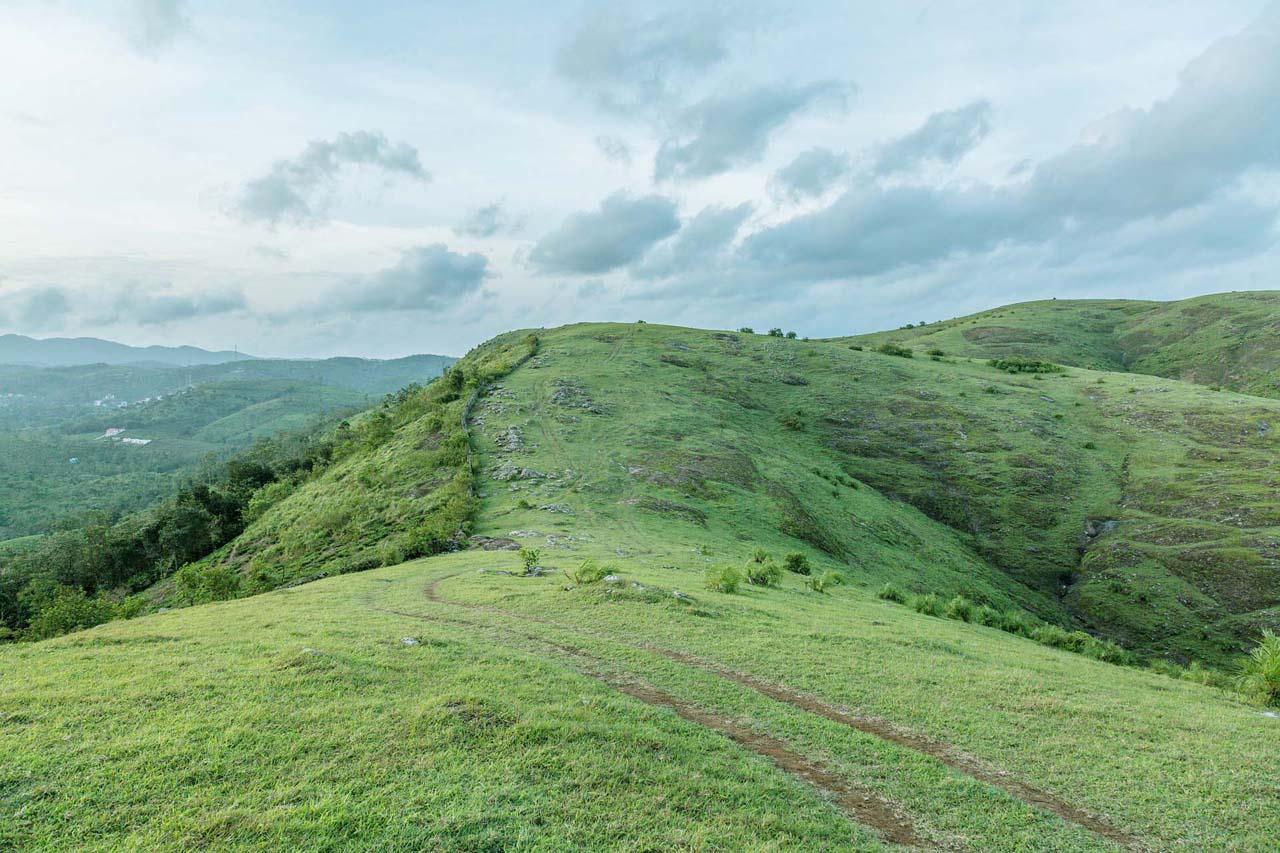 Meadows Kerala