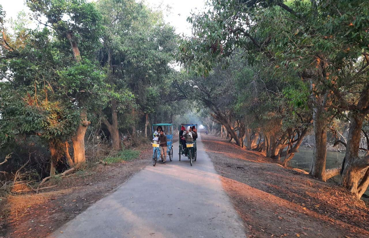 Rickshaw in Keoladeo national park